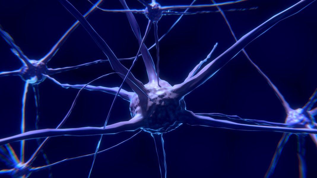 specializzazione neurologia